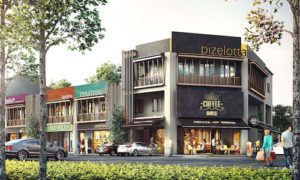 Link to Shops Project Page